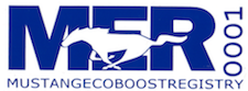 Ford Mustang EcoBoost Registry Decal